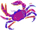 Cancer Crab Art T-shirts & Gifts