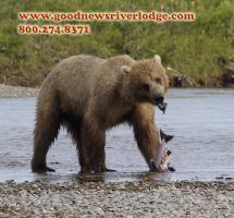 Alaska Images Section
