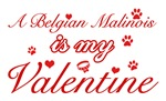 A Belgian Malinois is my valentines