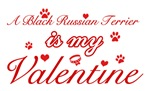 A Black Russian Terrier is my valentines