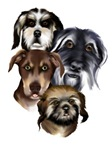 All Mutts