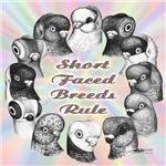 Shortfaced Pigeons