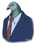 Homer Pigeon Suit