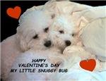 VALENTINE'S DAY SNUGGY BUG
