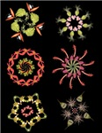Simple flower mandalas
