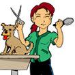 Groomer Humor - A Dog Groomer's Life