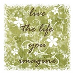 live the life you imagine (green)