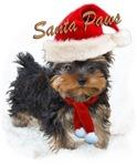 Yorkie Santa Paws