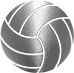 Silver Volleyball