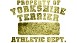Property of Yorkshire Terrier
