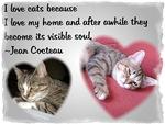 Famous Cats - Cocteau's Cat