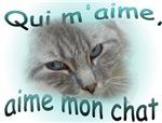 Animal de compagnie-Amoureux français