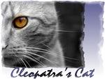 Famous Cats - Cleopatra's cat