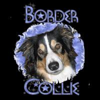 Blue Sky BORDER COLLIE