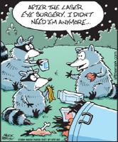 Raccoon Laser Eye Surgery