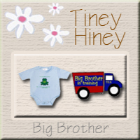 Big Brother T-shirts & gifts