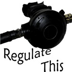 Regulate This
