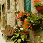 Floral Window Boxes Tuscany
