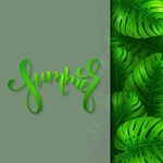 Summer Typography Monstera Leaves