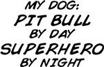 Superhero by Night