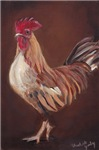 Gold/brown Rooster