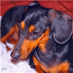 Dachshund Art Prints