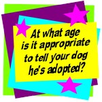 Age Appropriate