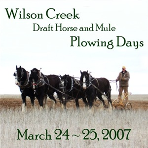 2007 Plowing Days