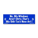 No, My Windows Aren't Dirty...