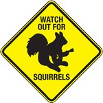 Watch Out For Squirrels