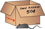 Used Kittens 50 cents