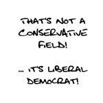 Conservative Fields