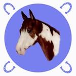 Paint Horse Design