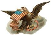 Vintage Eagle/Flag