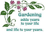 Gardening designs from Full Moon Emporium