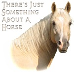 Something About A Horse