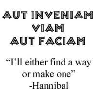 Aut Inveniam Viam Aut Faciam / Many Design Choices