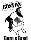 Boston Born & Bred