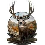 Mule deer oil painting in crest