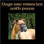 Dogs are miracles with paws design