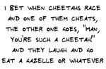 Cheetahs are Cheaters