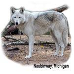 Naubinway, Michigan