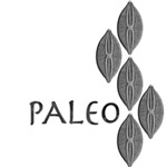 Paleo Diatoms Diatomeas