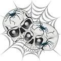 Spider Web Skulls