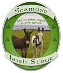 irish Beer labels