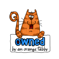 owned by an orange tabby