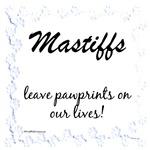Mastiff Pawprints