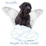 Mastiff(brindle) Angel
