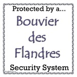 Bouvier Security