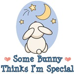 Easter Some Bunny Special T-shirt, Onesie Gifts